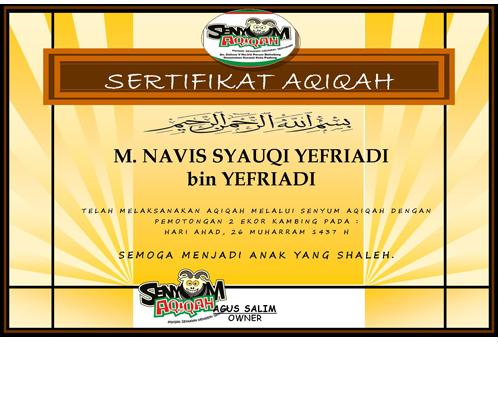 sertifikat-navis